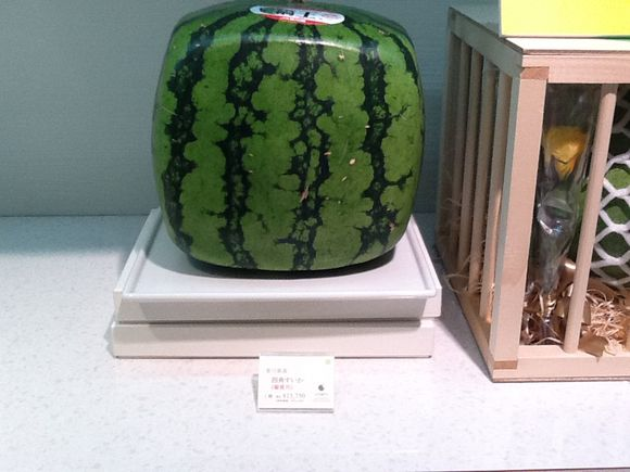 Who wants a $200 square watermelon?